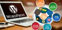 Why WordPress – A Perfect CMS For Your Website